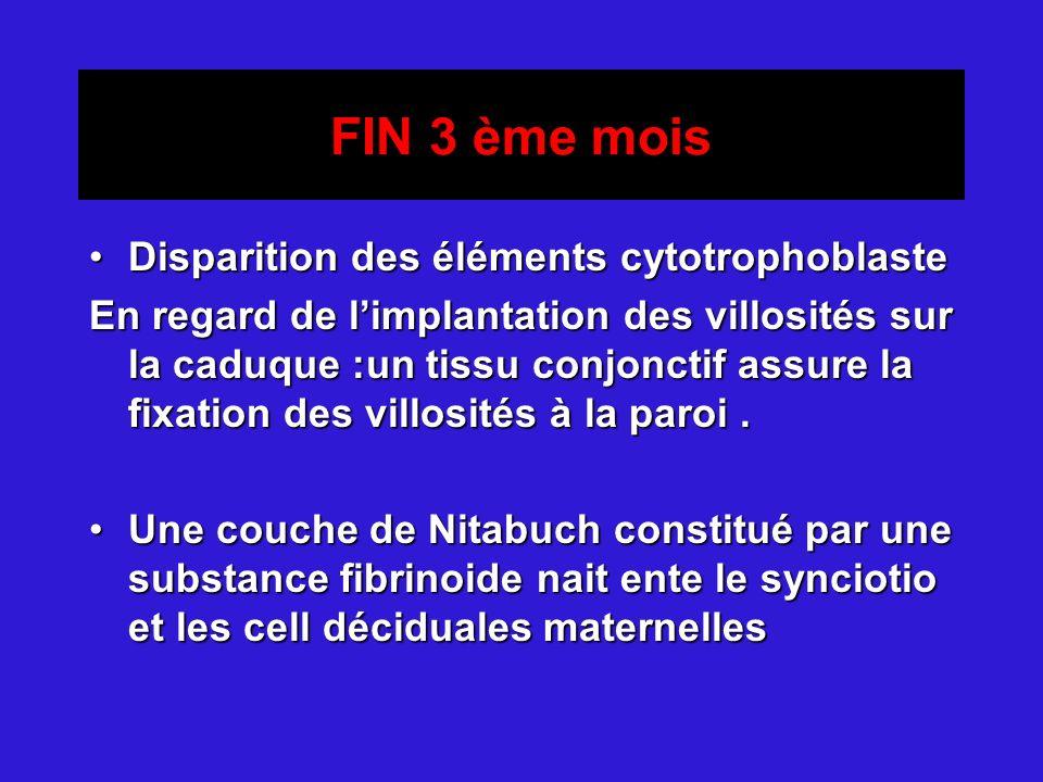 FIN 3 ème mois Disparition des éléments cytotrophoblasteDisparition des éléments cytotrophoblaste En regard de limplantation des villosités sur la cad