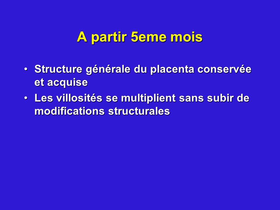 A partir 5eme mois Structure générale du placenta conservée et acquiseStructure générale du placenta conservée et acquise Les villosités se multiplien