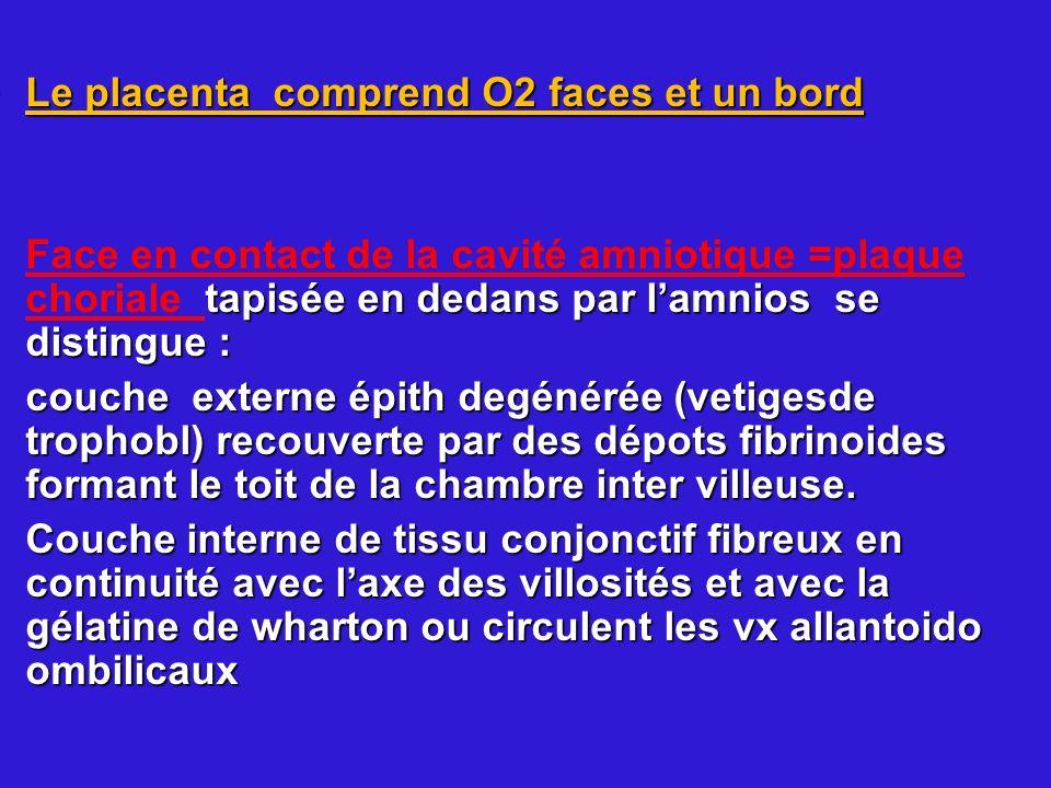 Le placenta comprend O2 faces et un bordLe placenta comprend O2 faces et un bord tapisée en dedans par lamnios se distingue : Face en contact de la ca
