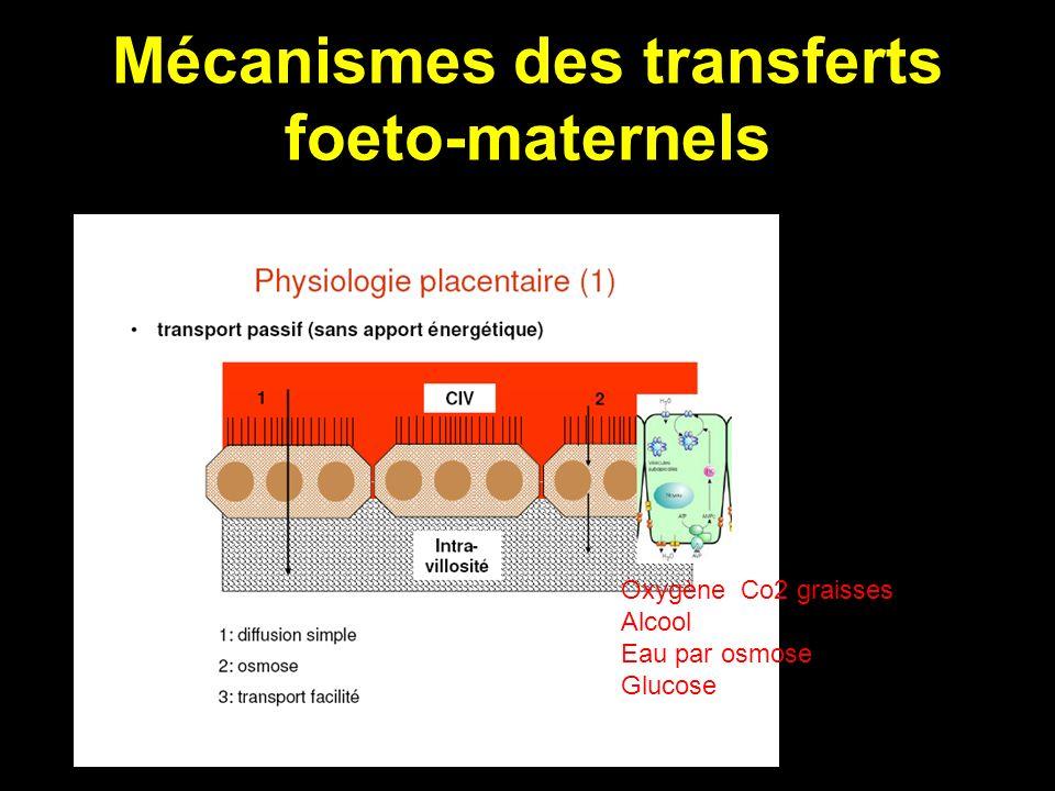 Mécanismes des transferts foeto-maternels Oxygène Co2 graisses Alcool Eau par osmose Glucose