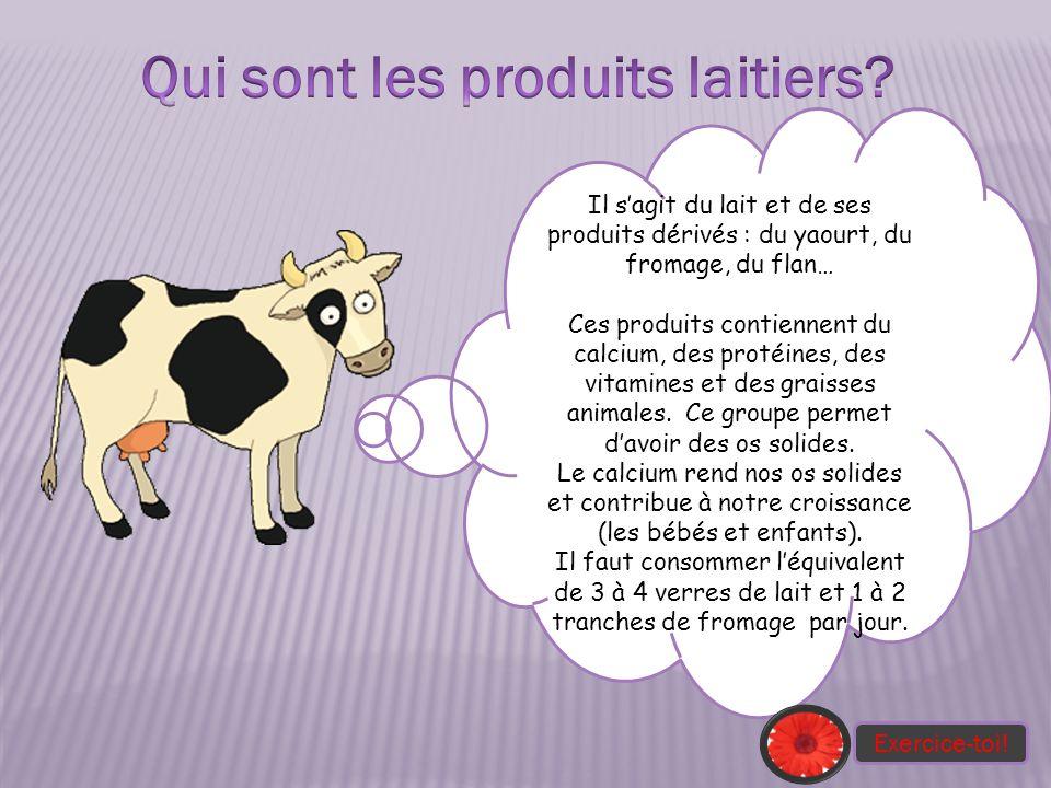 Il sagit du lait et de ses produits dérivés : du yaourt, du fromage, du flan… Ces produits contiennent du calcium, des protéines, des vitamines et des