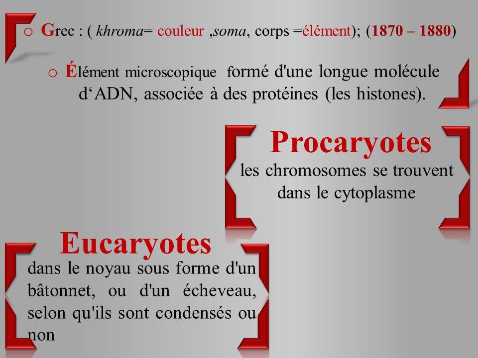 o G rec : ( khroma= couleur,soma, corps =élément); (1870 – 1880) o É lément microscopique f ormé d une longue molécule dADN, associée à des protéines (les histones).