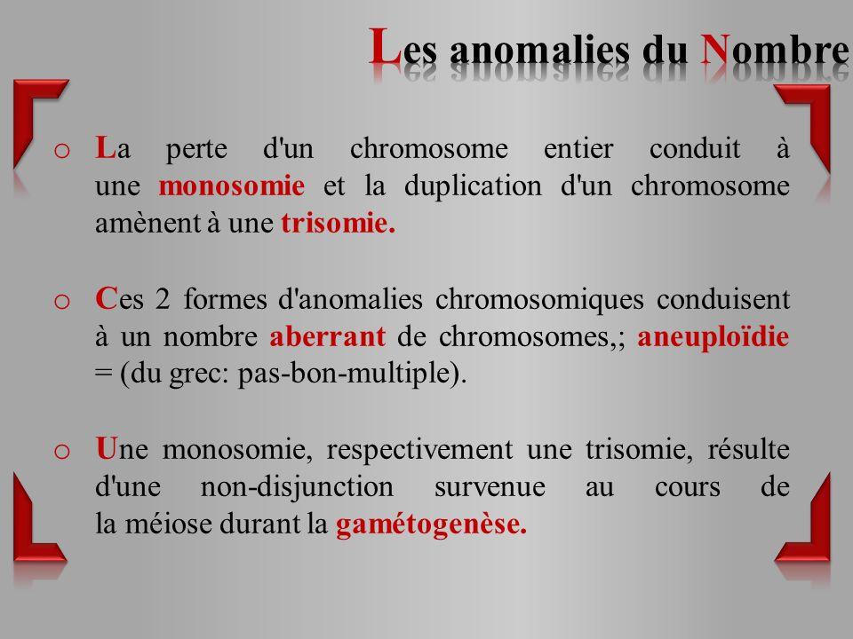 o L a perte d un chromosome entier conduit à une monosomie et la duplication d un chromosome amènent à une trisomie.