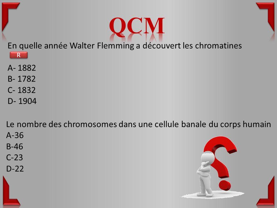 En quelle année Walter Flemming a découvert les chromatines A- 1882 B- 1782 C- 1832 D- 1904 Le nombre des chromosomes dans une cellule banale du corps humain A-36 B-46 C-23 D-22 R R