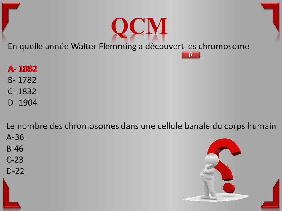 En quelle année Walter Flemming a découvert les chromosome A- 1882 B- 1782 C- 1832 D- 1904 Le nombre des chromosomes dans une cellule banale du corps humain A-36 B-46 C-23 D-22 R R A- 1882