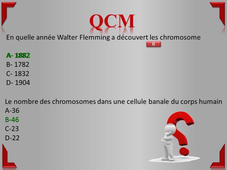 En quelle année Walter Flemming a découvert les chromosome A- 1882 B- 1782 C- 1832 D- 1904 Le nombre des chromosomes dans une cellule banale du corps humain A-36 B-46 C-23 D-22 R R A- 1882 B-46