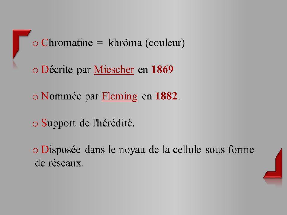 o Chromatine = khrôma (couleur) o Décrite par Miescher en 1869 o Nommée par Fleming en 1882.