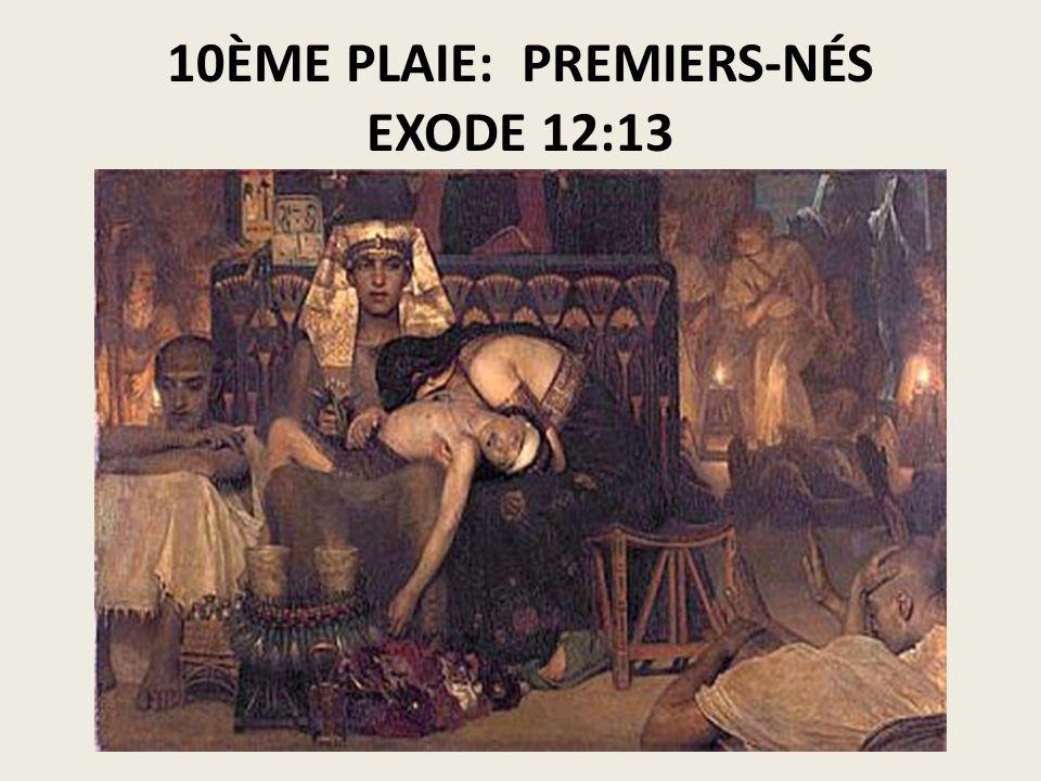 10ÈME PLAIE: PREMIERS-NÉS EXODE 12:13