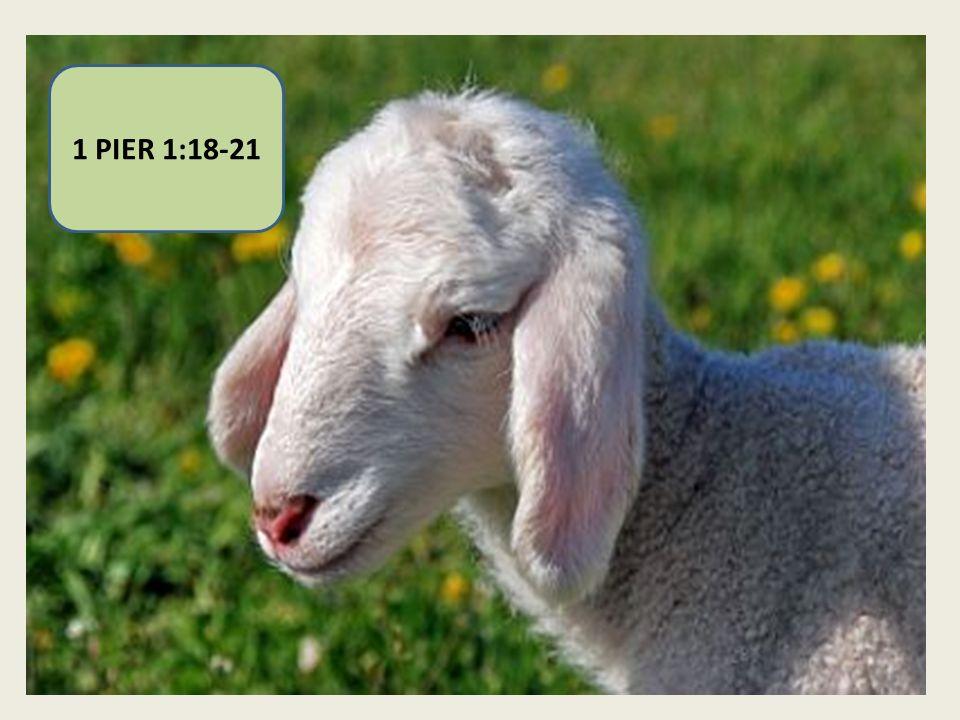=NOTRE ESPÉRANCE .1COR. 5:7 CHRIST NOTRE PÂQUE. 1 COR.