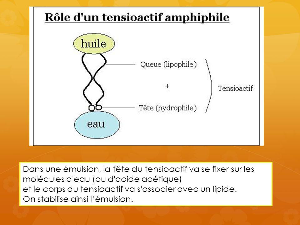 Dans une émulsion, la tête du tensioactif va se fixer sur les molécules d eau (ou d acide acétique) et le corps du tensioactif va s associer avec un lipide.