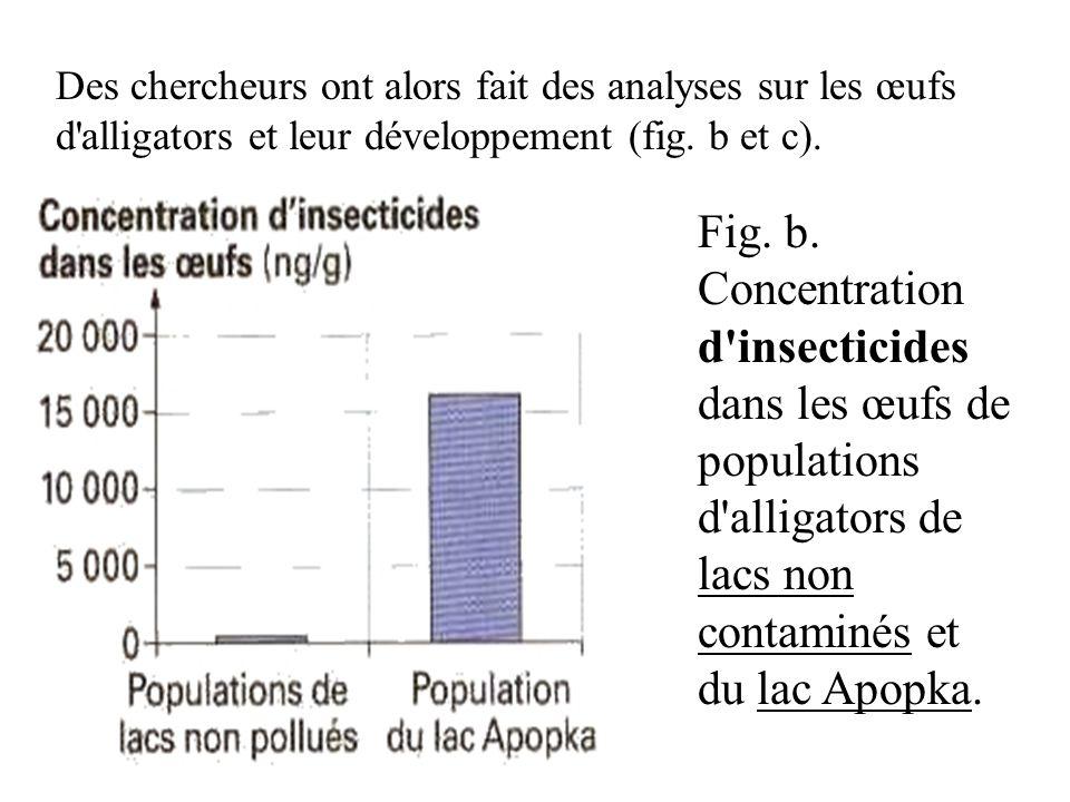 Des chercheurs ont alors fait des analyses sur les œufs d'alligators et leur développement (fig. b et c). Fig. b. Concentration d'insecticides dans le