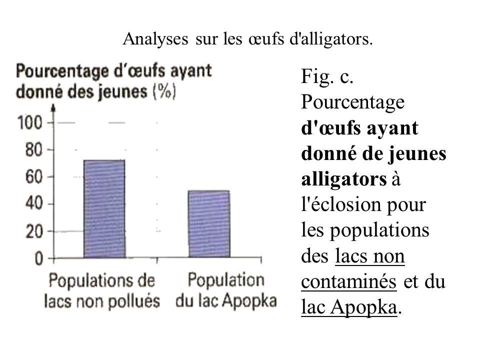 Fig. c. Pourcentage d'œufs ayant donné de jeunes alligators à l'éclosion pour les populations des lacs non contaminés et du lac Apopka. Analyses sur l