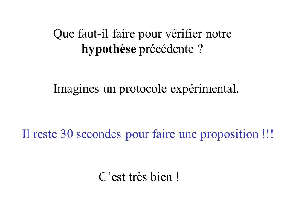 Que faut-il faire pour vérifier notre hypothèse précédente ? Imagines un protocole expérimental. Il reste 30 secondes pour faire une proposition !!! C