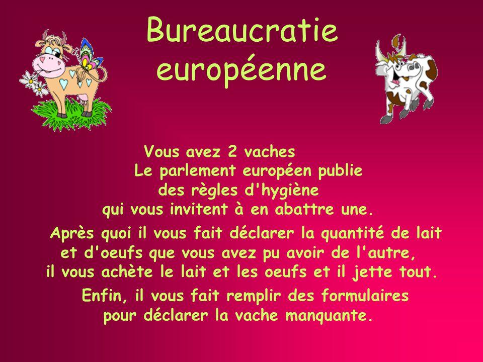 Bureaucratie européenne Vous avez 2 vaches Enfin, il vous fait remplir des formulaires pour déclarer la vache manquante.