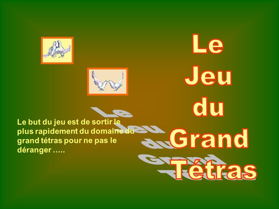 Le but du jeu est de sortir le plus rapidement du domaine du grand tétras pour ne pas le déranger …..