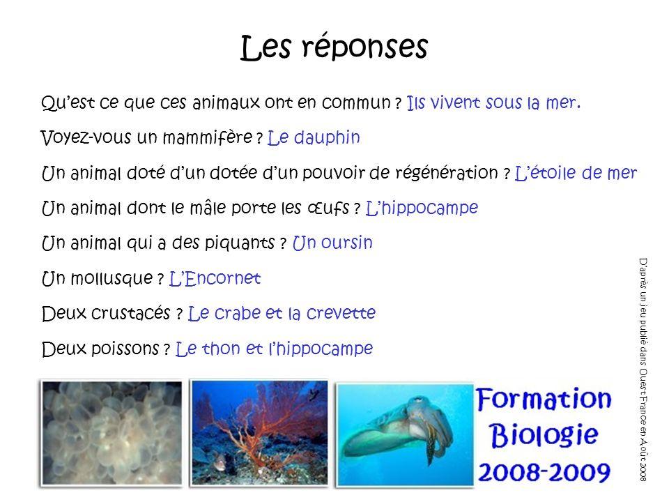 Les réponses Quest ce que ces animaux ont en commun ? Ils vivent sous la mer. Voyez-vous un mammifère ? Le dauphin Un animal doté dun dotée dun pouvoi