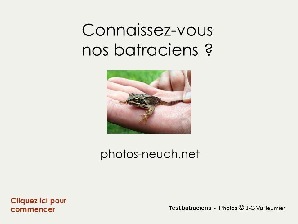 Connaissez-vous nos batraciens ? Cliquez ici pour commencer photos-neuch.net Test batraciens - Photos © J-C Vuilleumier