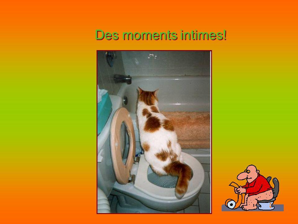 Des moments intimes! Des moments intimes!
