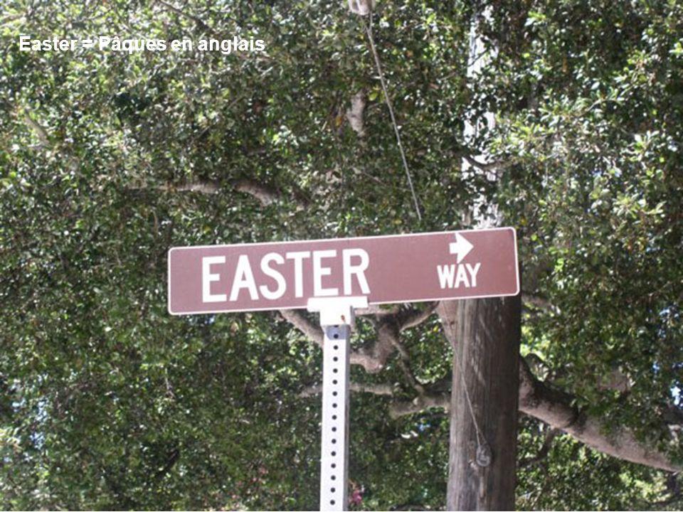 Lîle de Pâques …qui na rien à voir avec la fête religieuse …