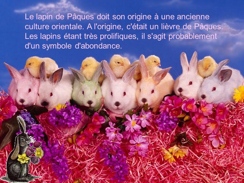 Le lapin de Pâques doit son origine à une ancienne culture orientale. A l'origine, c'était un lièvre de Pâques. Les lapins étant très prolifiques, il