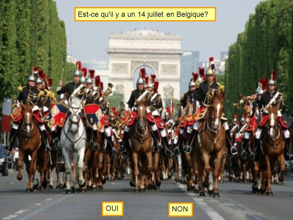 Est-ce qu il y a un 14 juillet en Belgique? OUI NON