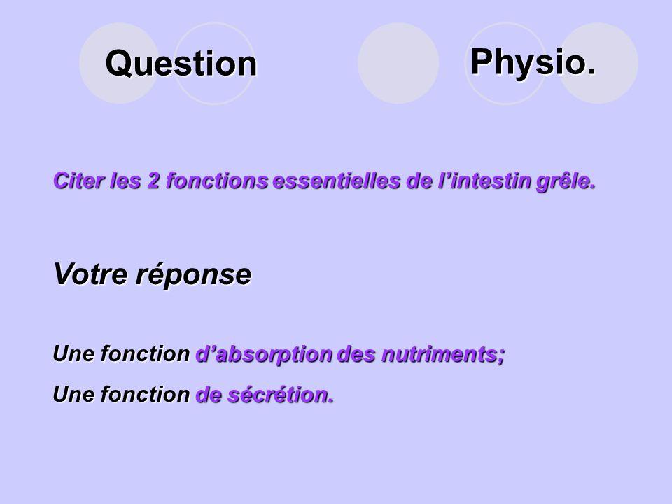Question Lintestin grêle est un tube enroulé sur lui-même, et composé de 3 parties. Lesquelles? Votre réponse Le duodénum ;Le duodénum ; Le jéjunum ;L