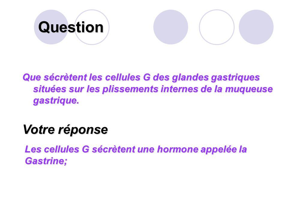 Question Citer les 4 sortes de mouvements intestinaux que permet La musculature de lintestin grêle. Votre réponse Les mouvements des villosités, (mobi