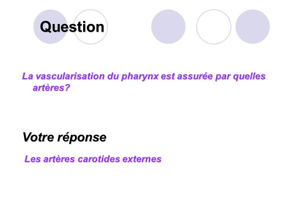 Question Définir l « éructation ». Votre réponse Le terme éructation (rot) désigne le renvoi bruyant par la bouche d'air et de gaz provenant de l'esto