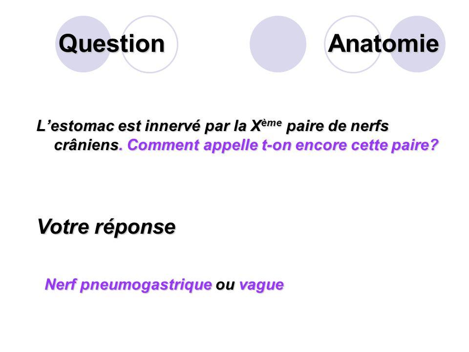Question Quest ce que les « hémorroïdes ». Votre réponse Les hémorroïdes sont au sens premier, des veines présentes au niveau des muqueuses de l'anus