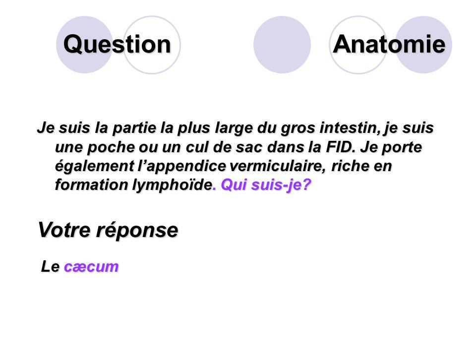 Question Citer et argumenter les conseils dhygiène « intestinale » à connaître pour éviter la crise hémorroïdaire. Votre réponse Aller à la selle au m