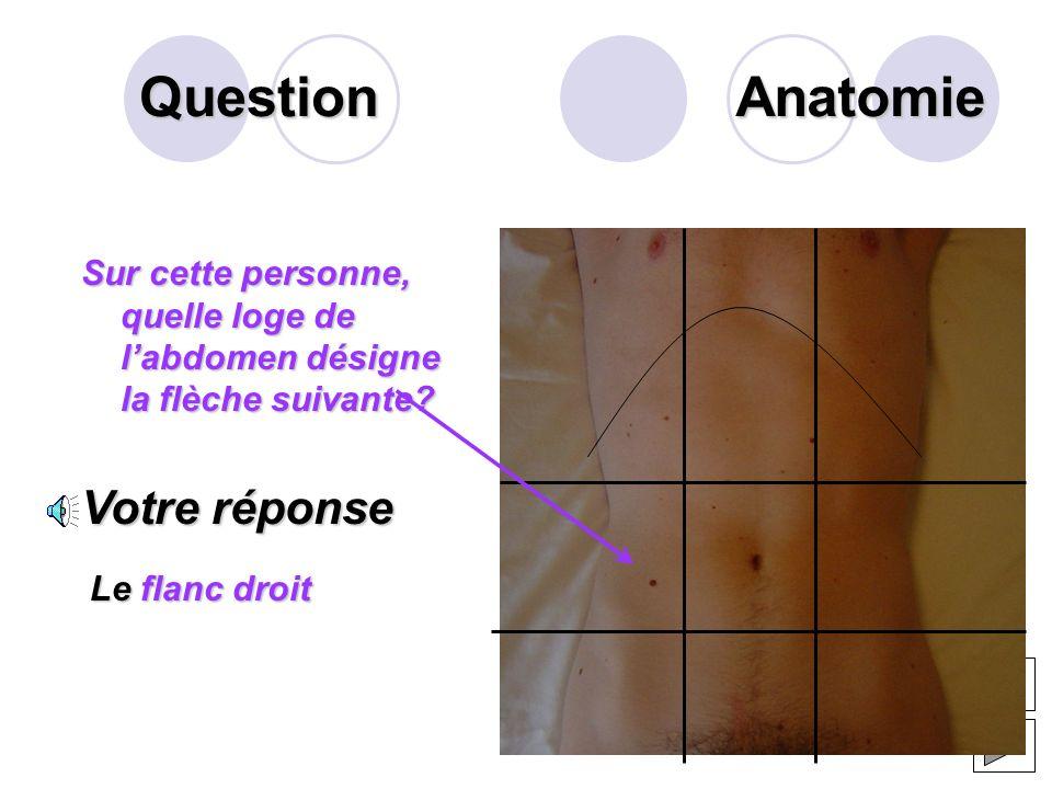 Question Lappareil digestif est un ensemble dorganes qui assurent la digestion. Il comprend les organes creux et les organes pleins. Citer 2 organes p