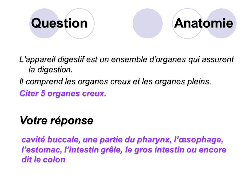 Question Lappareil digestif est un ensemble dorganes qui assurent la digestion.