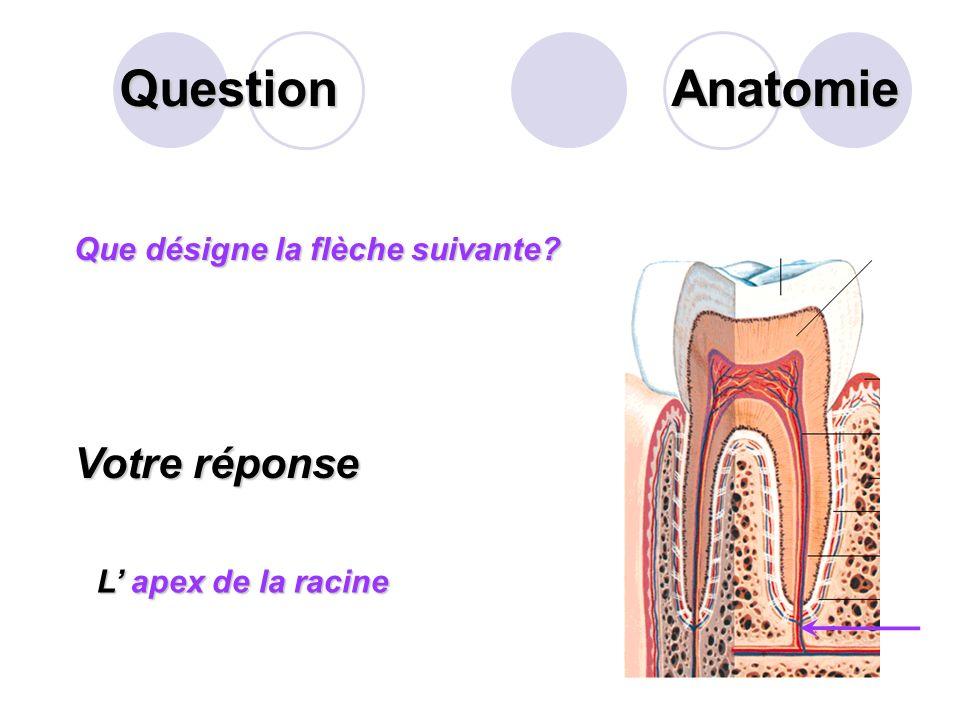 Question Définir la « gastrite ». Votre réponse La gastrite est un trouble de la digestion qui se manifeste par l'inflammation de la muqueuse de l'est