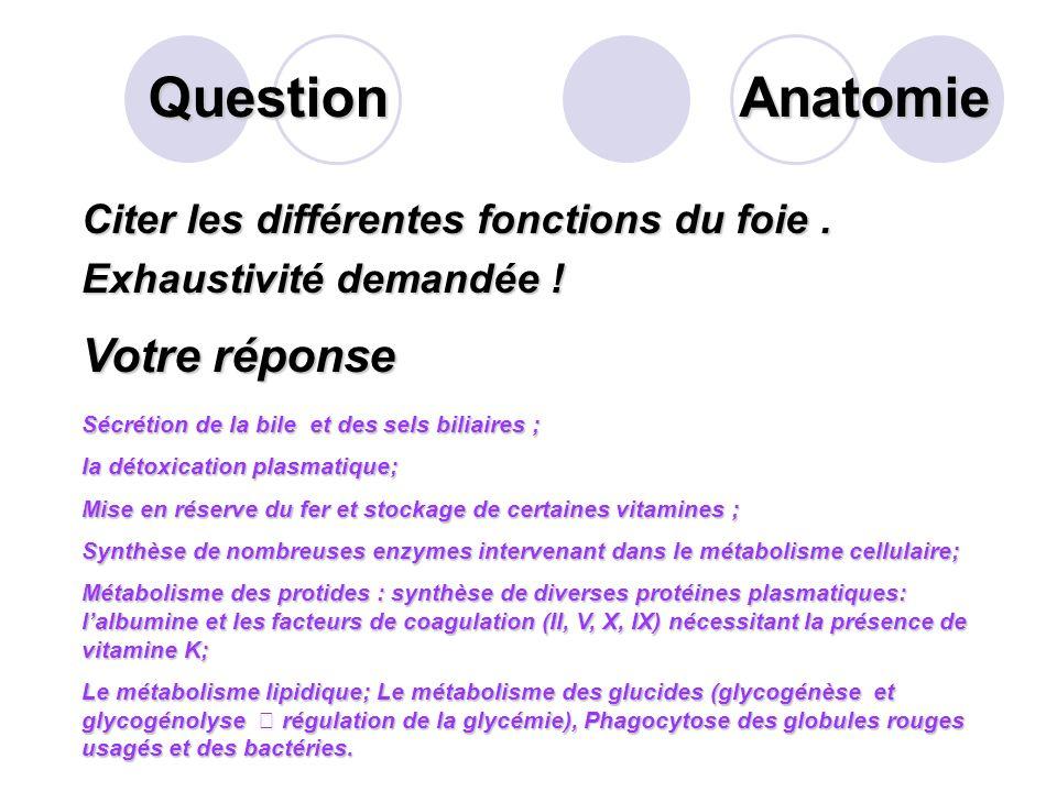 Question Sur ce schéma des voies biliaires extra- hépatiques, que désigne la flèche? Votre réponse La portion horizontale du Duodénum Anatomie
