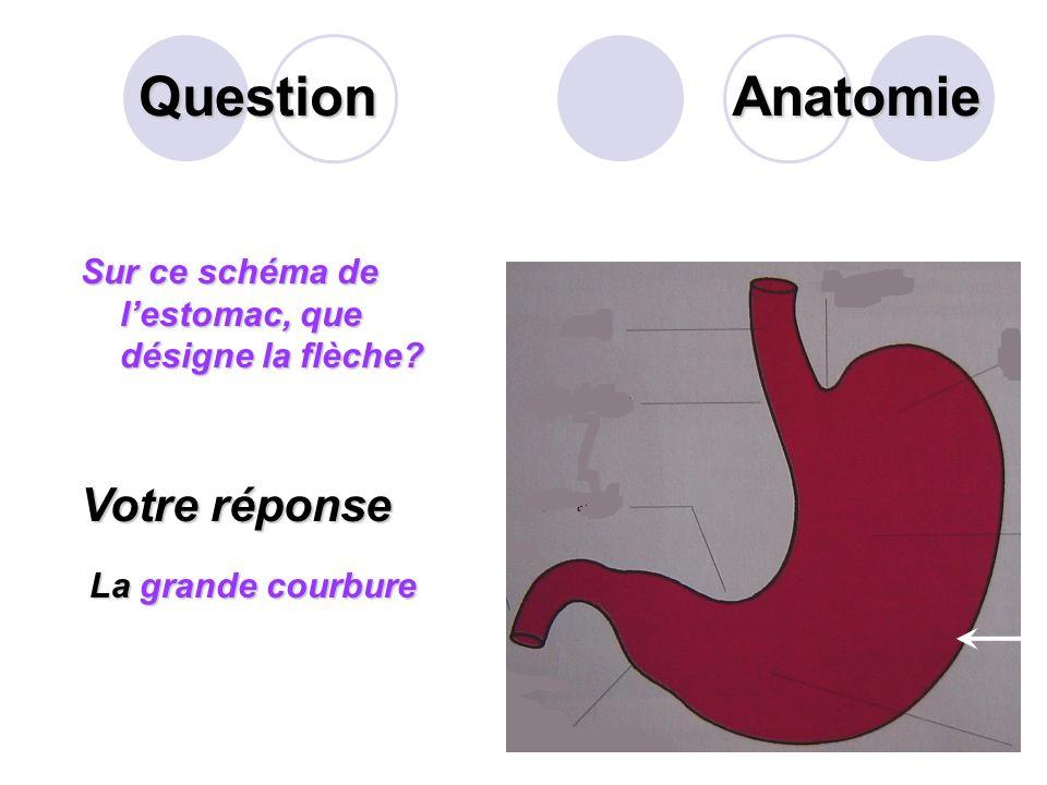 Question Compléter la phrase suivante: Lappareil digestif est un ensemble dorganes qui assurent la digestion. Il comprend les organes ? et les organes