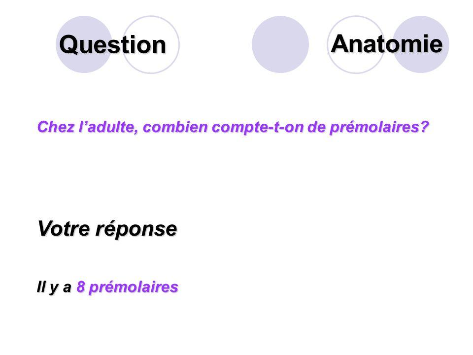 Question Que désigne la flèche suivante? Votre réponse La ou Les racine(s) Anatomie