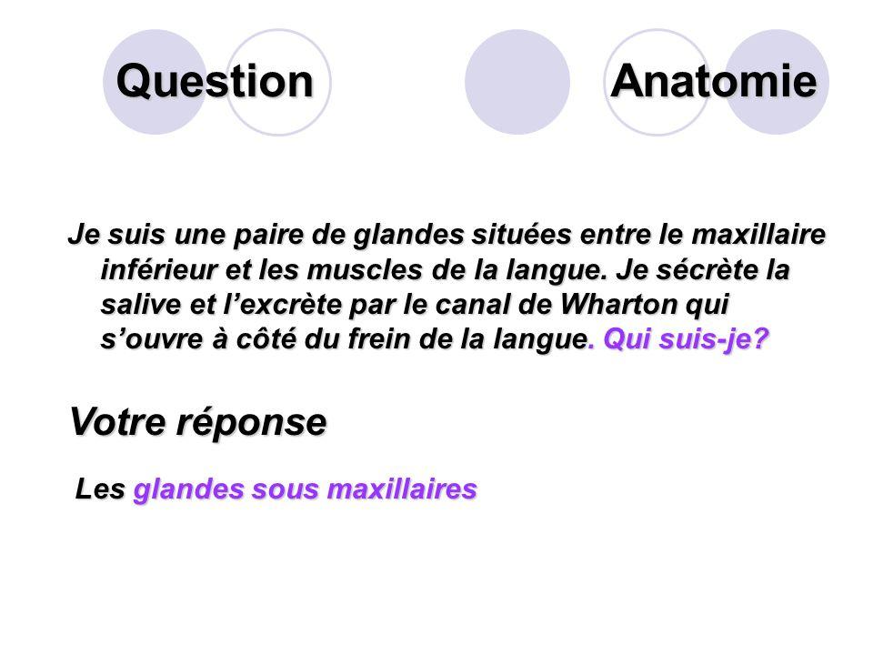Question Chez ladulte, combien compte-t-on de prémolaires? Votre réponse Il y a 8 prémolaires Anatomie