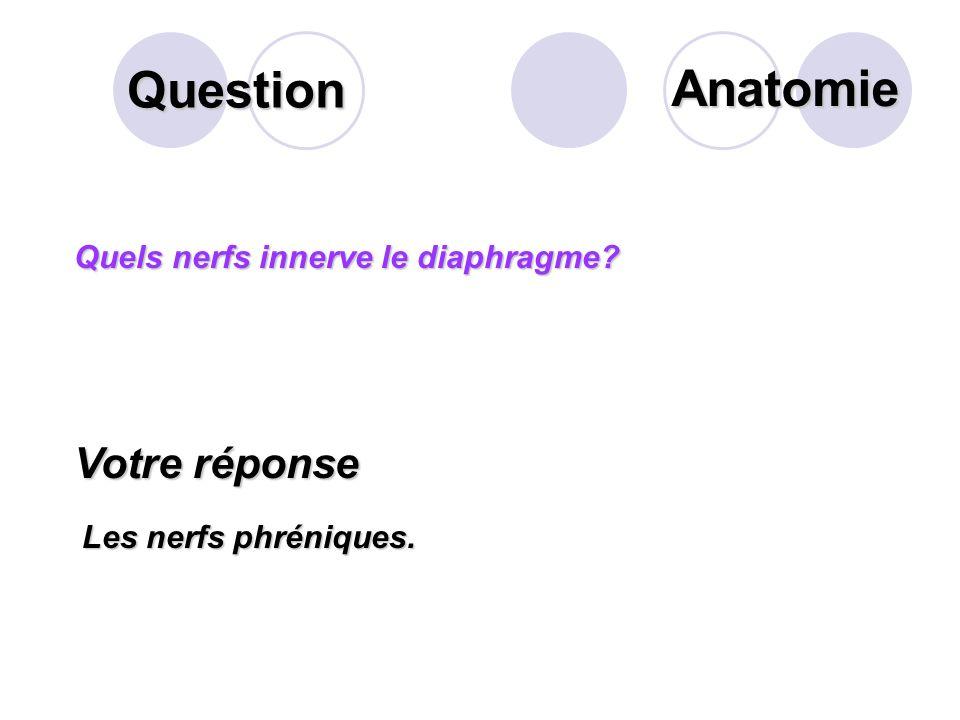 Question Sur ce schéma des voies biliaires extra- hépatiques, que désigne la flèche? Votre réponse Les canaux hépatiques droit et gauche Anatomie