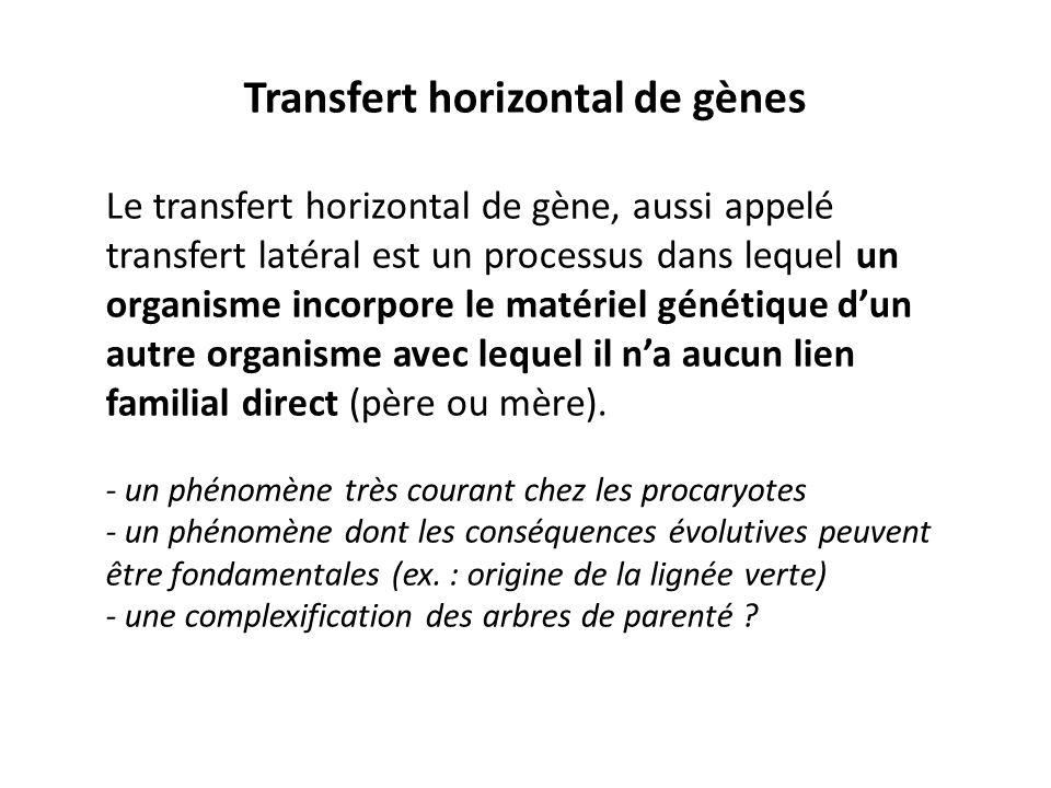 Transfert horizontal de gènes Le transfert horizontal de gène, aussi appelé transfert latéral est un processus dans lequel un organisme incorpore le m