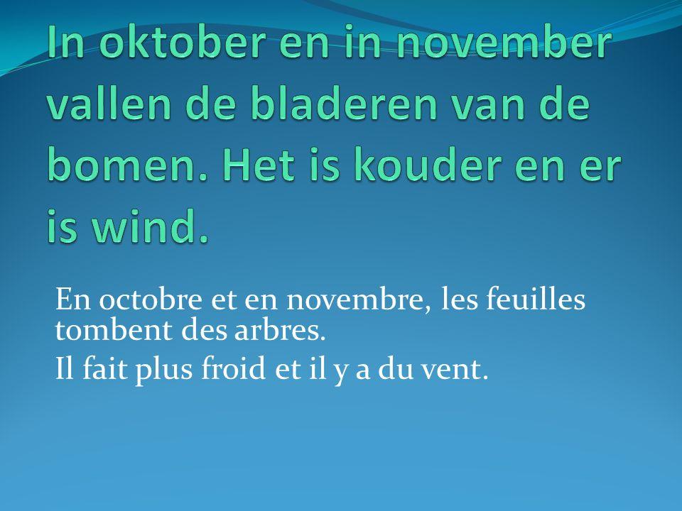 En octobre et en novembre, les feuilles tombent des arbres. Il fait plus froid et il y a du vent.