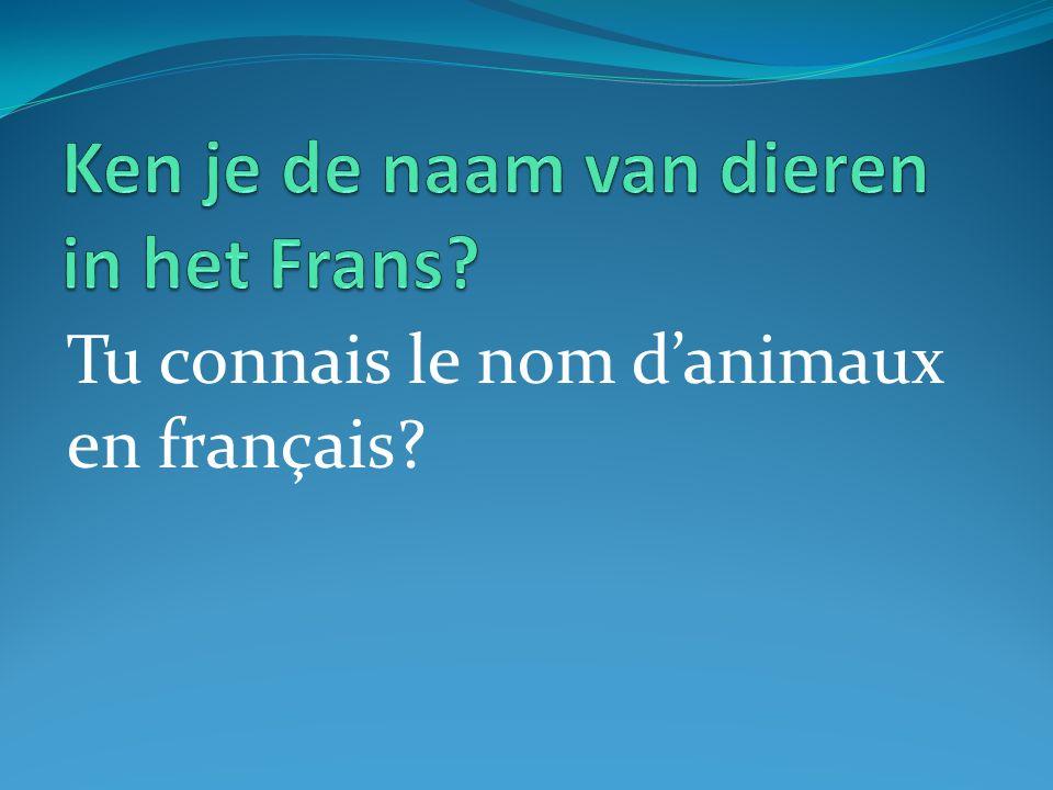 Tu connais le nom danimaux en français?