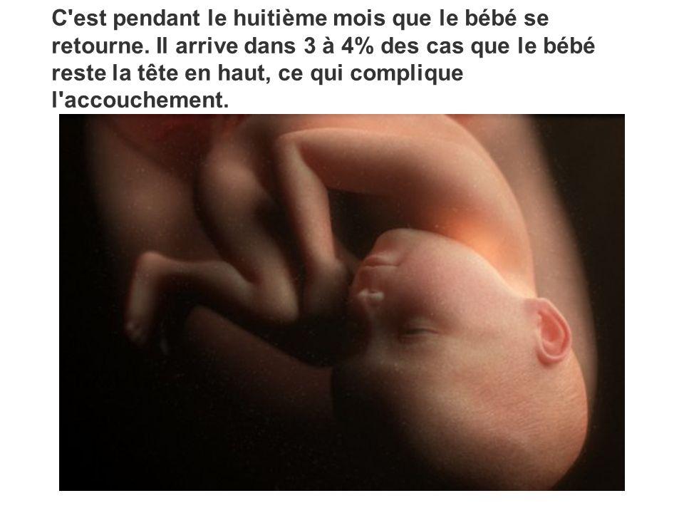 C'est pendant le huitième mois que le bébé se retourne. Il arrive dans 3 à 4% des cas que le bébé reste la tête en haut, ce qui complique l'accoucheme