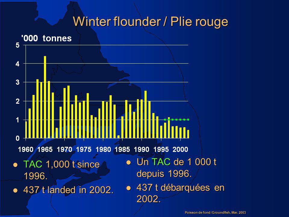 Poisson de fond /Groundfish, Mar.2003 Winter flounder / Plie rouge l TAC 1,000 t since 1996.