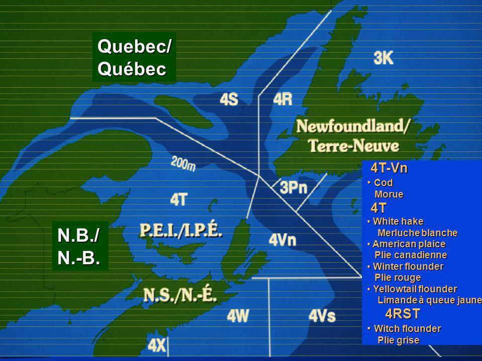 Poisson de fond /Groundfish, Mar. 2003 4T-Vn 4T-Vn Cod Morue Cod Morue 4T 4T White hake Merluche blanche White hake Merluche blanche American plaice P