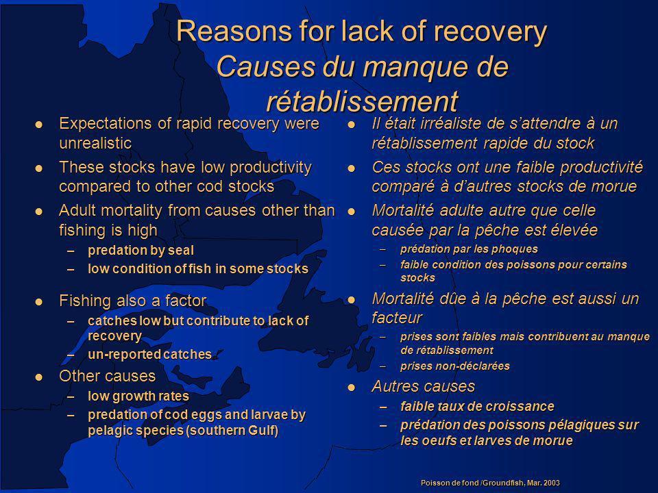 Poisson de fond /Groundfish, Mar. 2003 Reasons for lack of recovery Causes du manque de rétablissement l Expectations of rapid recovery were unrealist