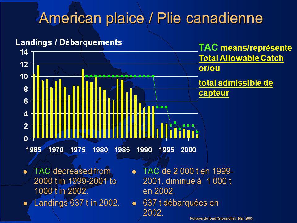 Poisson de fond /Groundfish, Mar. 2003 American plaice / Plie canadienne l TAC decreased from 2000 t in 1999-2001 to 1000 t in 2002. l Landings 637 t