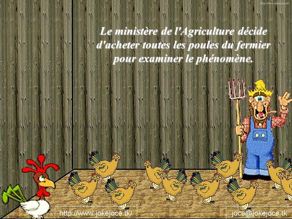 Le ministère de l Agriculture décide d acheter toutes les poules du fermier pour examiner le phénomène.