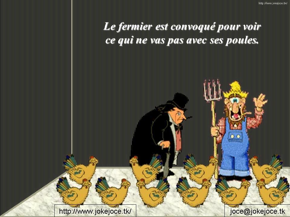 Le fermier est convoqué pour voir ce qui ne vas pas avec ses poules.