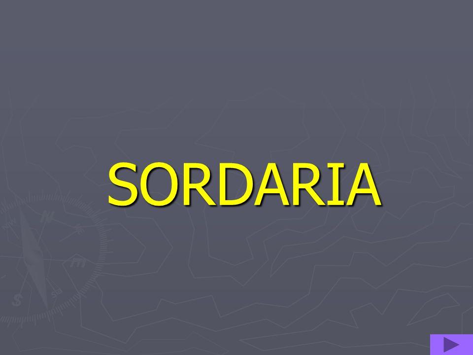 SORDARIA