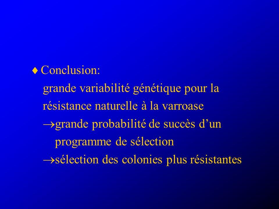 Conclusion: grande variabilité génétique pour la résistance naturelle à la varroase grande probabilité de succès dun programme de sélection sélection des colonies plus résistantes